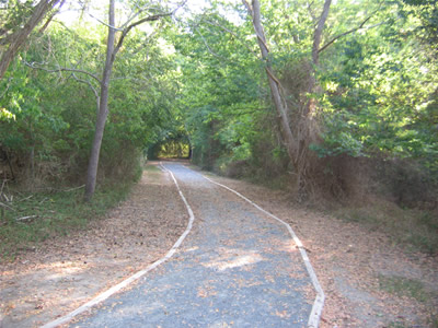 Wheelchair accessible trail