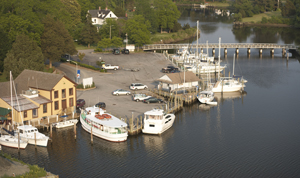 aerial photo of harbor with sail boats
